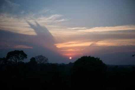 Cambodian Jungle Sunset Siem Reap